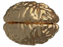 Golden Brain